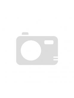 Battery - аккумулятор для Raypex 5